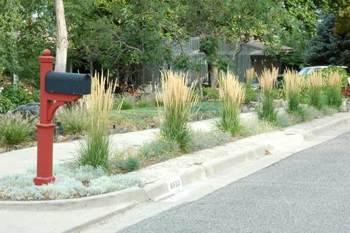 Front Landscape Design Ideas House