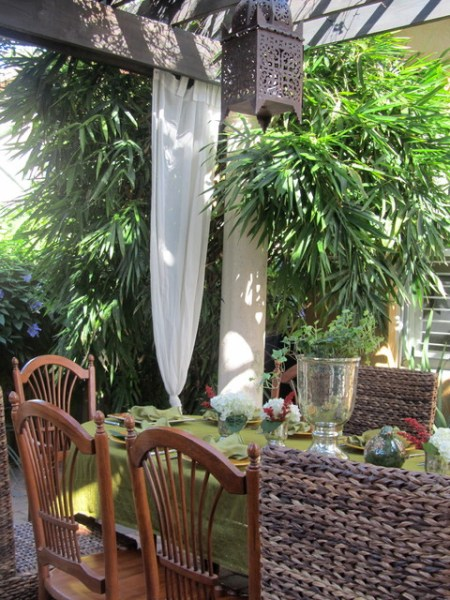tropical outdoor patio Outside - Tropical - Patio - miami