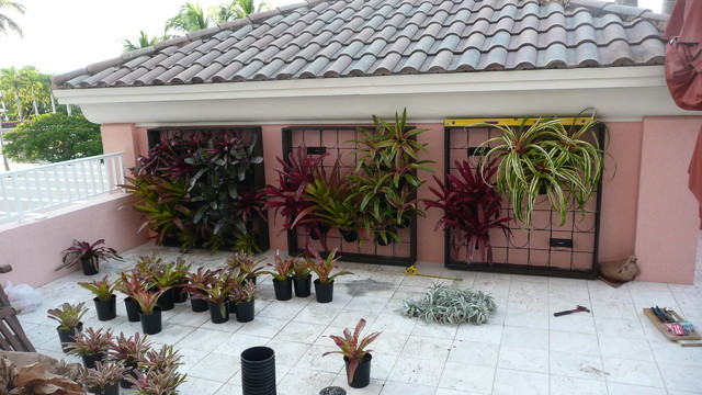 Green Wall - Modern - Patio - miami - by ecopacheco on Green Wall Patio id=71747