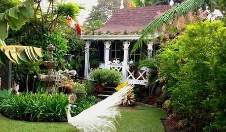 Jardín de la semana: Un paraíso de flores y plantas en Guatemala