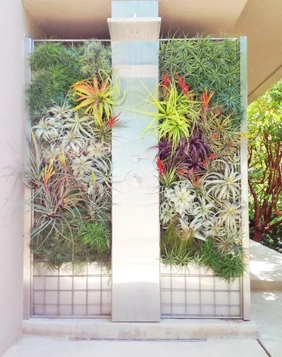 Bring More Green to Your Patio or Side Yard With a Living Wall on Green Wall Patio id=64901