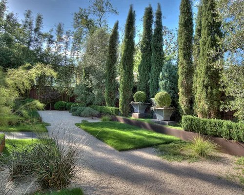 Best Cypress Trees Design Ideas Amp Remodel Pictures Houzz