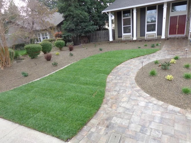 Transitional  by Legacy Landscape