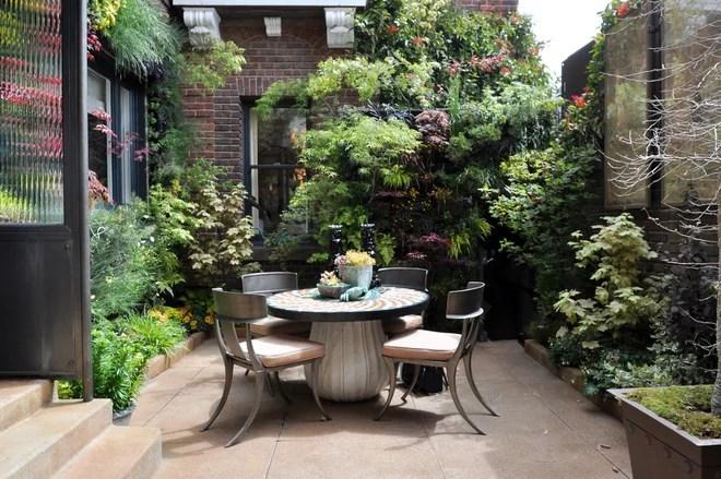 Contemporaneo Patio Birds of Prey Courtyard Garden by Living Green
