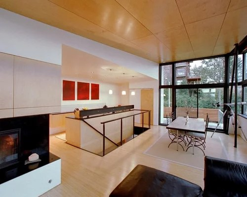 Plywood Ceiling Panels Houzz