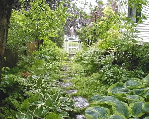Shade Garden Home Design Ideas, Pictures, Remodel and Decor on Shady Yard Ideas  id=28392