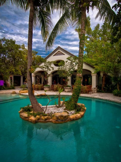 Palm Tree Backyard Ideas, Pictures, Remodel and Decor on Palm Tree Backyard Ideas id=69949