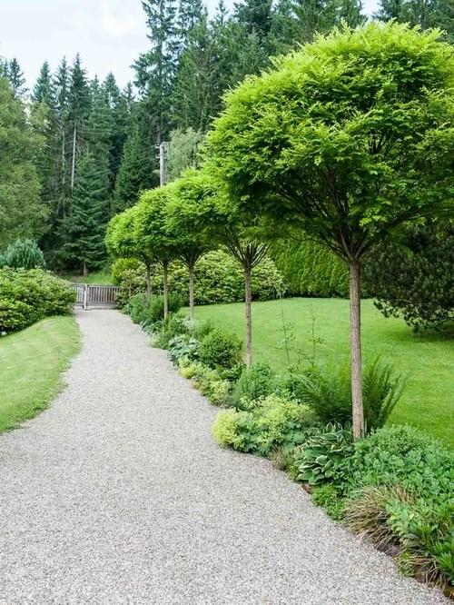 Farmhouse Front Yard Landscape Ideas, Designs, Remodels ... on Farmhouse Backyard Landscaping id=70237