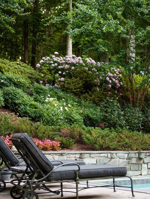 Residential Steep Slope Landscaping Ideas, Pictures ... on Steep Hill Backyard Ideas id=41690