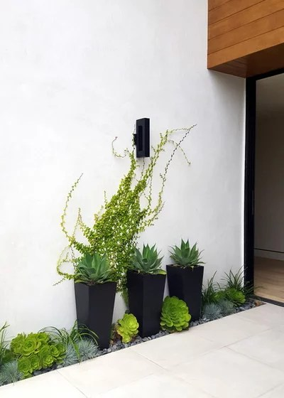 Modern Landscape by Living Gardens Landscape Design