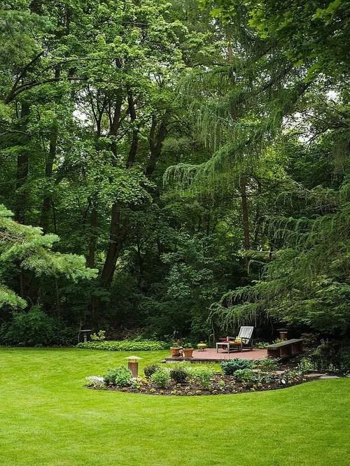 Wooded Backyard   Houzz on Wooded Backyard Ideas id=65131
