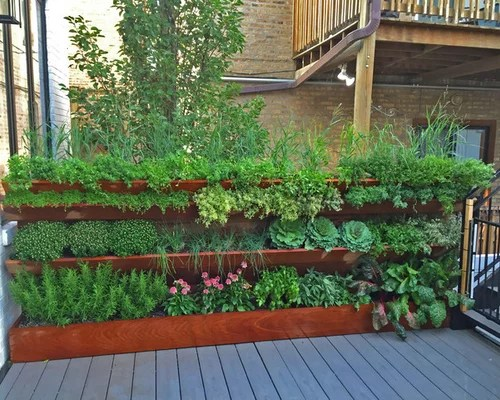 vegetable roof garden Outdoor Rooftop Design Ideas, Renovations & Photos with a