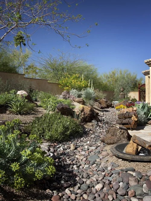 Backyard Desert Landscaping | Houzz on Desert Landscape Ideas For Backyards id=87279
