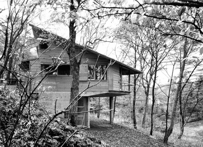 Frank Lloyd Wright's Enduring Influence on Japanese Home Design (II)