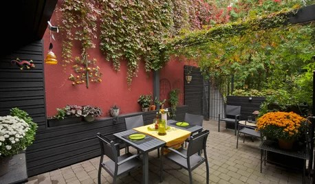Backyard Ideas On Houzz Tips From The Experts