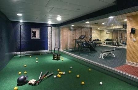 Indoor Batting Cage Houzz
