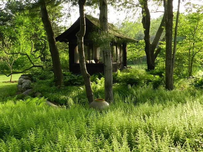Farmhouse  by Hilarie Holdsworth Design