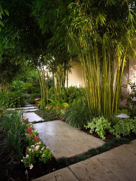 tropical garden design Tropical Landscape Ideas, Designs, Remodels & Photos
