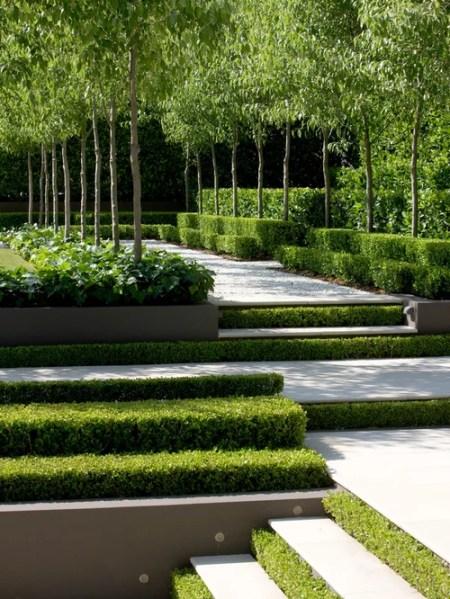 landscaping garden design ideas Transitional Landscape Ideas, Designs, Remodels & Photos