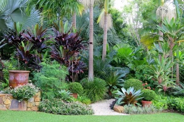 tropical garden design A Gardener's Guide to Subtropical Climates