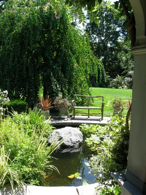 Weeping Willow Tree Houzz