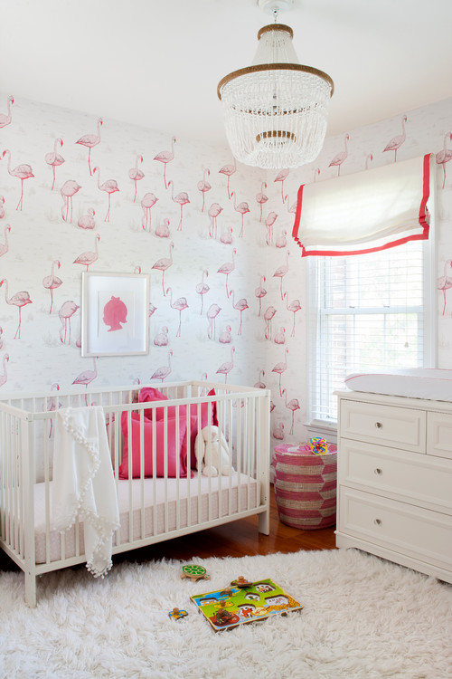 Washington DC Nursery
