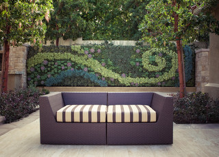 Outdoor Living Wall contemporary-patio