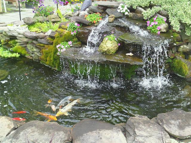 Small Fish Ponds Waterfalls