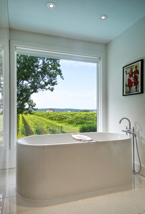 My Houzz: Niagara Vineyard Renovation