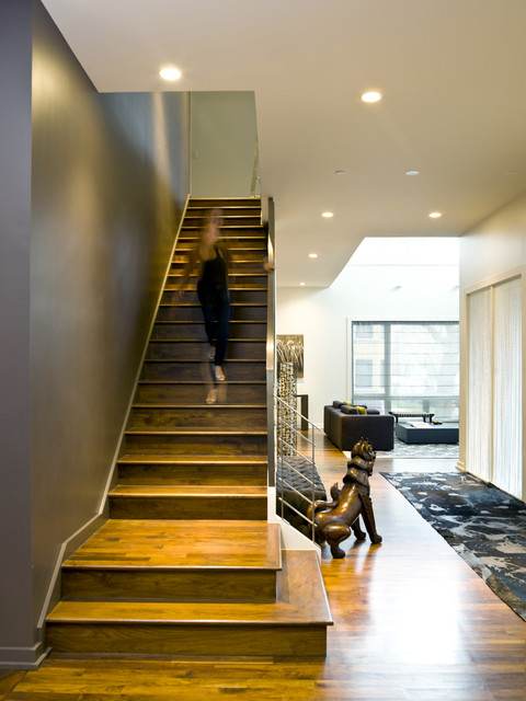 Bucktown Beauty Modern Staircase Chicago By