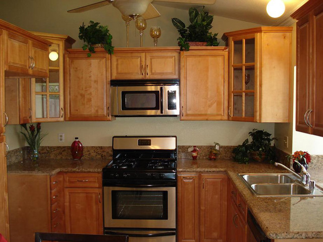 Cinnamon Maple Kitchen Cabinets Home Design - Traditional ... on What Color Countertops Go With Maple Cabinets  id=17001