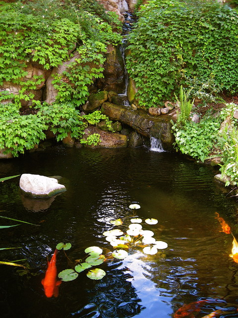 Grotto Traditional Landscape Los Angeles By Gilson Group Landscape Design