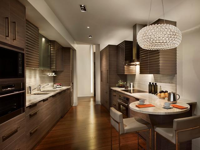 Modern Galley Kitchen Contemporary Kitchen