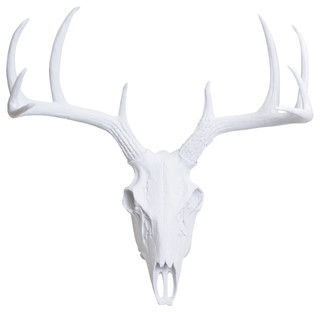Faux Resin Deer Skull Wall Mount, White