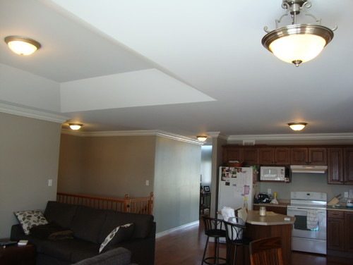 Lighting For Open Concept Kitchendinningliving Area And 2 Halls