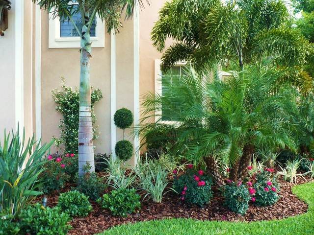 Front Landscape & Pool Waterfall - Tropical - Landscape ... on Tropical Backyard Landscaping  id=36750
