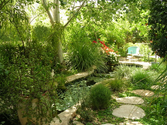 magic garden - Eclectic - Landscape - Tel Aviv - by ... on Magical Backyard Ideas id=70728