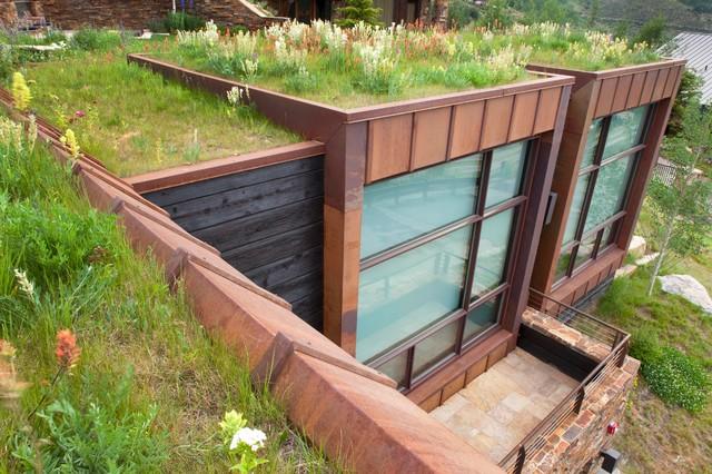 Vail Guest House modern-exterior