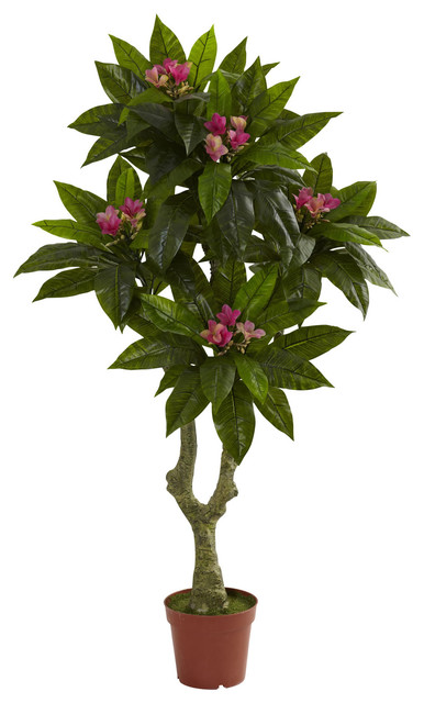 Nearly Natural Nearly Natural 5 Plumeria Tree UV Resistant IndoorOutdoor Amp Reviews Houzz
