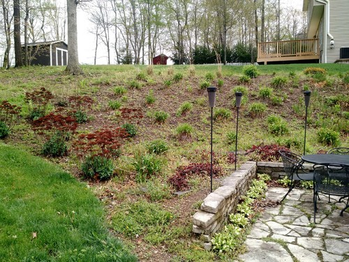 Need landscaping ideas for steep slope on Steep Sloping Garden Ideas  id=99646