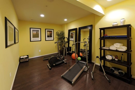 Modern Home Gym By Laura Bendik Interiors