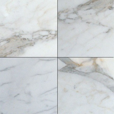Polished Calacatta Gold Marble Tile Traditional Wall