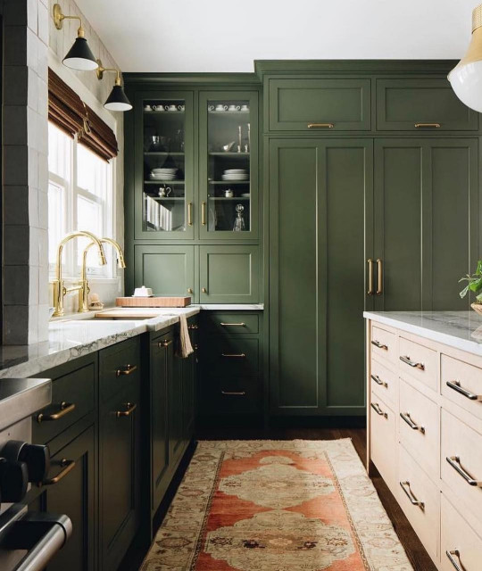 Painted Cabinets transitional-kitchen