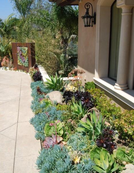 modern succulent garden ideas A Succulent Wall - Contemporary - Landscape - Los Angeles