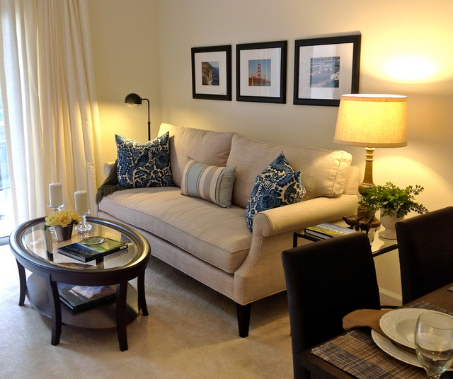 Small Apartment Living Contemporary Living Room Raleigh By Lee Ann Burkhart Interiors