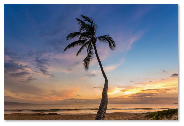 Pierre Leclerc 'Sunset Palm Tree' Canvas Art