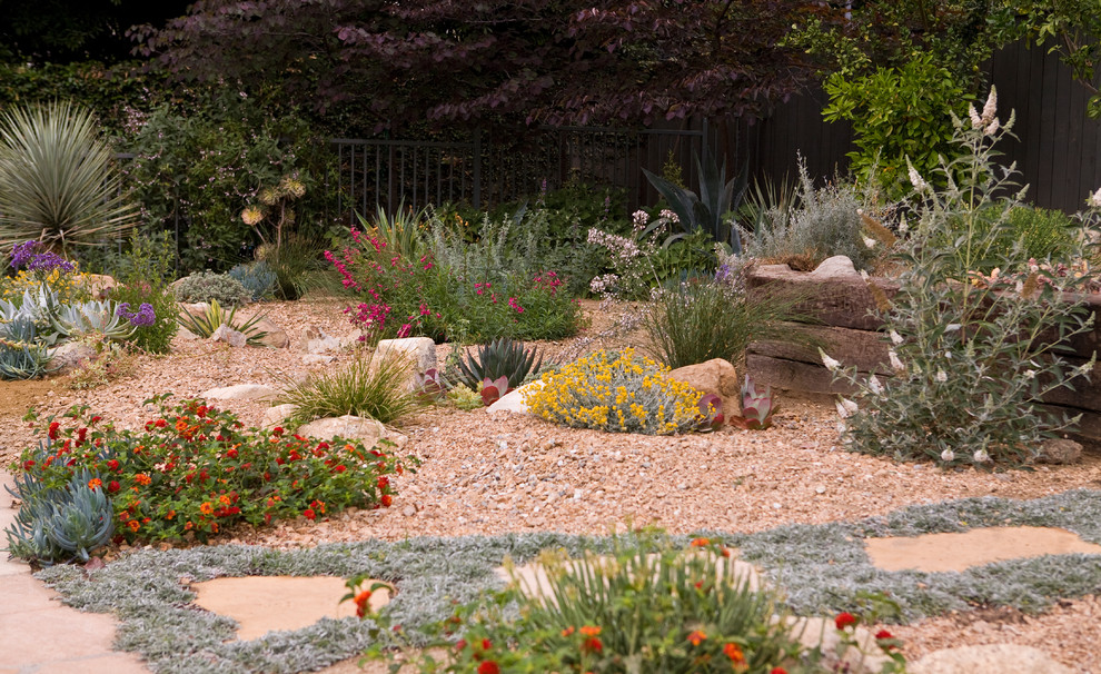 Arcadia Dry Garden - Transitional - Landscape - Los ... on Arcadia Backyard Designs id=70026