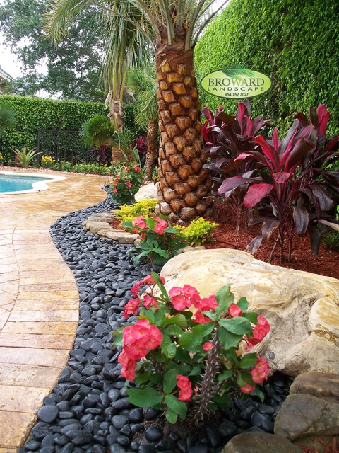 Front Yard Landscape - Tropical - Landscape - Miami - by ... on Tropical Landscaping Ideas For Small Yards id=69671