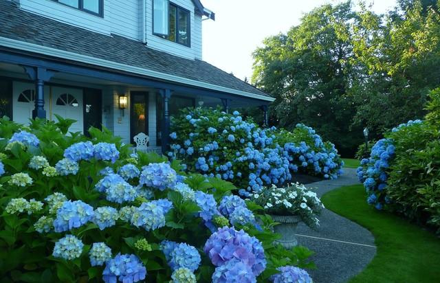 A Blue Garden Traditional Landscape Vancouver