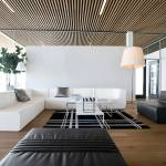 Black Leather Sofa Ideas Houzz